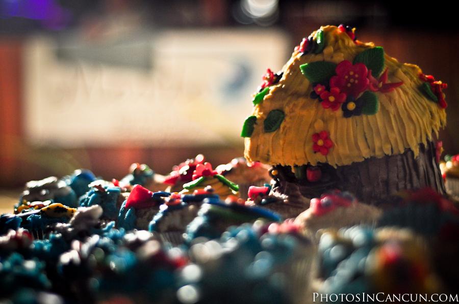 Loris Cupcakes