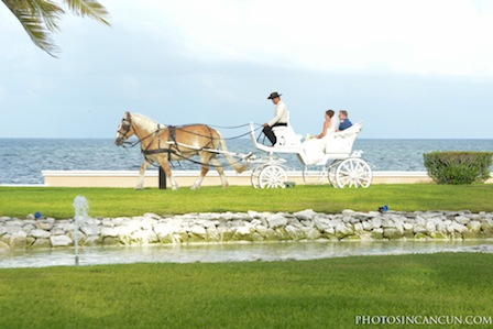 Moon Palace Wedding Horse Carriage